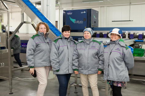 The power of three: Ukrainian blueberry growers go co-op